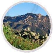 Mountain Cactus View - Santa Monica Mountains Round Beach Towel