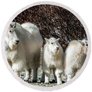 Mountain Goat Mom And Kids Round Beach Towel