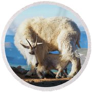 Mountain Goats Nanny And Kid Round Beach Towel
