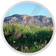 Round Beach Towel featuring the photograph Mountain Landscape View - Purple Flowers by Matt Harang