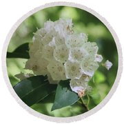 Round Beach Towel featuring the photograph Mountain Laurel - Spring by Nikolyn McDonald