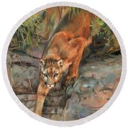 Round Beach Towel featuring the painting Mountain Lion 2 by David Stribbling