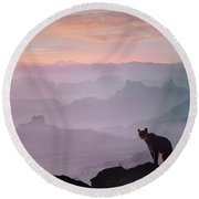 Mountain Lion Round Beach Towel by Tim Fitzharris