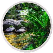 Mountain Stream Round Beach Towel by Blair Stuart