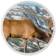 Mountain Top Elk Round Beach Towel