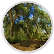Round Beach Towel featuring the photograph Mountain Way by Mark Blauhoefer