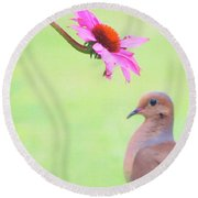 Round Beach Towel featuring the photograph Mourning Dove by Sue Collura
