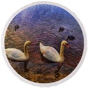 Mr And Mrs Swan Go Viisiting Round Beach Towel