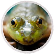 Mr Frog Round Beach Towel