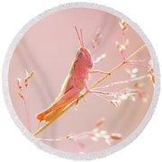 Mr Pink - Pink Grassshopper Round Beach Towel by Roeselien Raimond