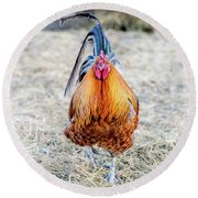 Mr. Rooster Round Beach Towel