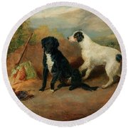 Mr Stott's Favourite Dogs Round Beach Towel