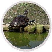Mr. Turtle Round Beach Towel