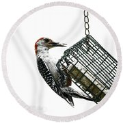 Mr. Woodpecker Round Beach Towel by Melissa Messick