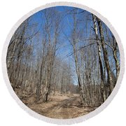 Round Beach Towel featuring the photograph Mud Season In The Adirondacks by David Patterson