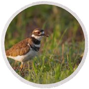 Muddy Killdeer Round Beach Towel