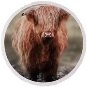 Muddy Moo The Heilan Coo Round Beach Towel