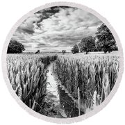 Muddy Path Round Beach Towel