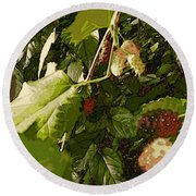 Mulberry Moment Round Beach Towel