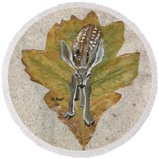 Mule Dear Fawn Round Beach Towel by Ralph Root