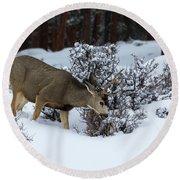Mule Deer - 9130 Round Beach Towel