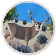 Mule Deer Trophy Buck Round Beach Towel by Walter Colvin