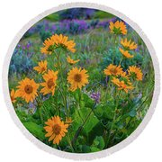 Mule's Ear And Lupine Round Beach Towel