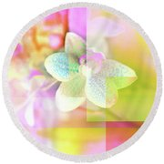 Multicolor Orchids Round Beach Towel