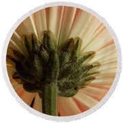 Mum From Below Round Beach Towel
