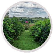 Round Beach Towel featuring the photograph Muscadine View by Paul Mashburn