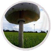 Mushroom 005 Round Beach Towel by Chris Mercer
