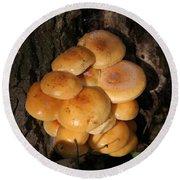 Mushroom Cluster Round Beach Towel