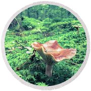 Mushroom In The Green Wood Round Beach Towel