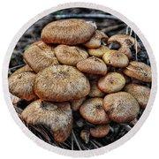 Mushroom Nest Round Beach Towel