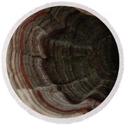 Round Beach Towel featuring the photograph Mushroom Shells by Kim Henderson