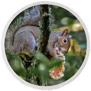 Round Beach Towel featuring the photograph Mushroom Treat by Norman Peay