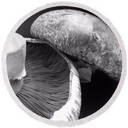 Mushrooms In Black And White Round Beach Towel