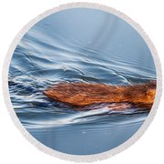 Muskrat Speed Swiming Round Beach Towel