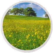 Round Beach Towel featuring the photograph Mustard Field by Mark Greenberg