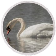 Round Beach Towel featuring the photograph Mute Swan by David Bearden