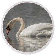 Mute Swan Round Beach Towel by David Bearden