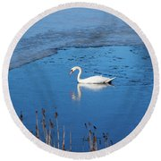 Mute Swan Swimming Round Beach Towel