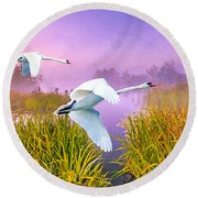 Mute Swans Over Marshes Round Beach Towel
