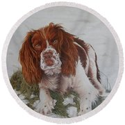 Muttley-the Best Springer Spaniel Round Beach Towel
