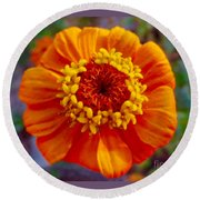 My Bit Of Orange Zinnia Heaven Round Beach Towel