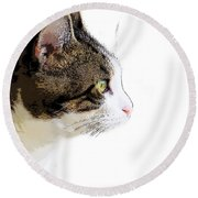 My Cat Round Beach Towel