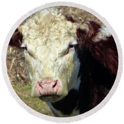 My Favorite Cow Round Beach Towel by Tina M Wenger