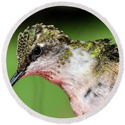 My Hummingbird Round Beach Towel by Debbie Green