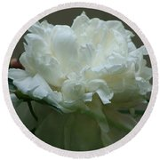 Round Beach Towel featuring the photograph My Little Peony by Barbara S Nickerson