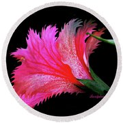 Palm Springs Flower My Name Is Wow Round Beach Towel